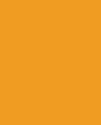 Orange sales representative in professional clothing depicting Sales Careers