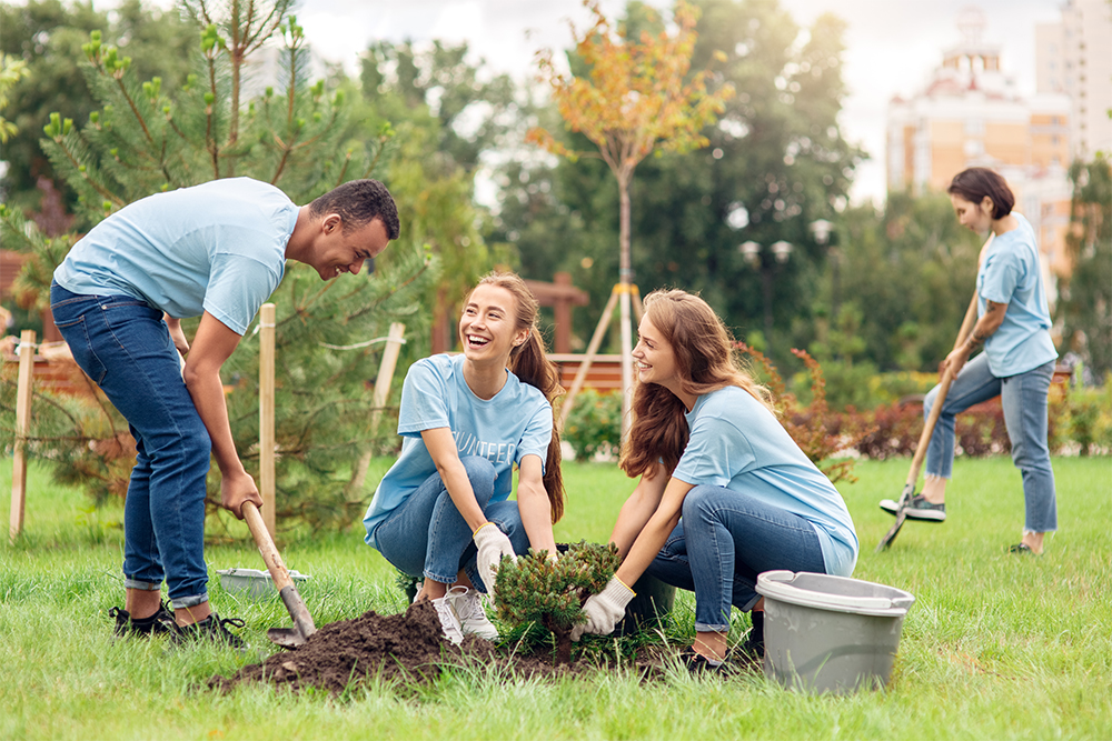 People planting trees to help the environment